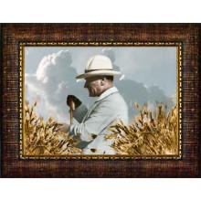 Çerçeveli Tarlada Buğday Başakları Arasında Çiftçi Atatürk Resmi Yandan Renkli Atatürk Profil Portresi Atacrap66y