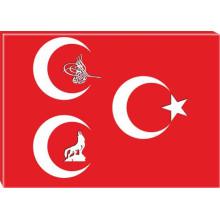 MHP Kanvas Tablo Bozkurt-Tuğra-Yıldızlı Üç Hilal MHPTR12USY