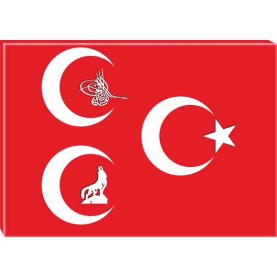 Mhp Kanvas Tablo Bozkurt, Tuğra, Yıldızlı Üç Hilal Tablosu Mhptr12usy