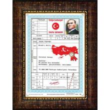 ANI Türkiye Tapusu Resmi Çerçeveli Resim ANICR04TTD