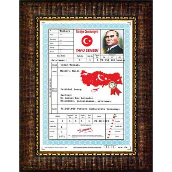 Çerçeveli Resim Türkiye Tapusu Resmi Anicr04ttd