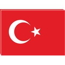 ANI Türk Bayrağı Resmi Tuval Kanvas Tablo ANITR01BRY